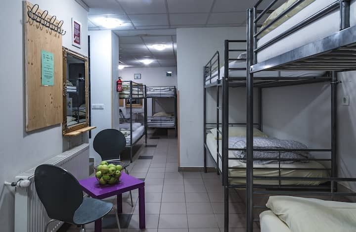 HOSTEL 24, 12 bed Dorm