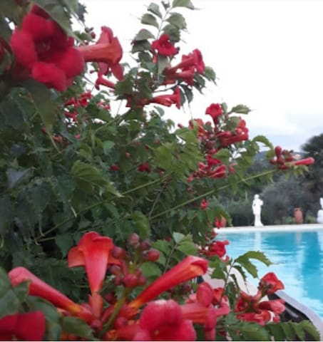 Casa colonica tipica toscana con piscina
