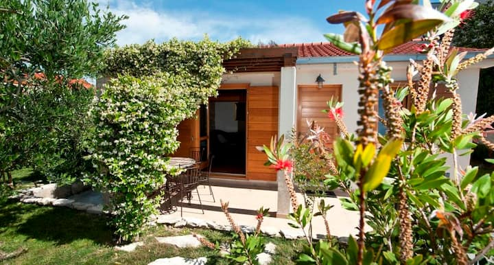 House&spacious private garden, free parking