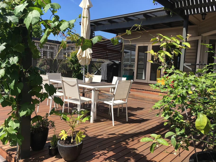 Deck and grapevine