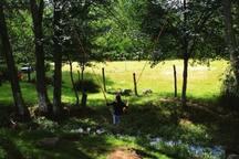 Cabaña los Bosques -Habitación para 3 pers.