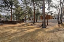 Huge yard with swings, cottonwoods, plenty of room to play and roam!