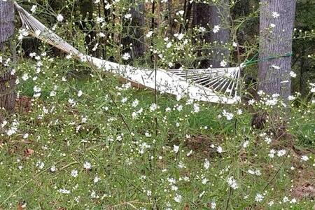 Snowbird Retreat (Campsite 3)