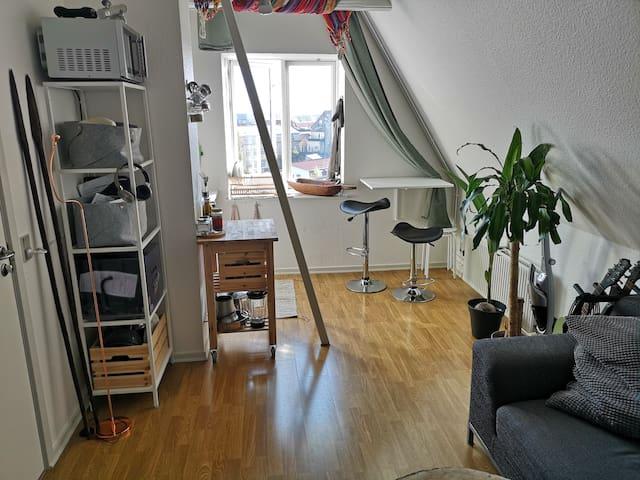 Lille charmerende lejlighed centralt i Odense!