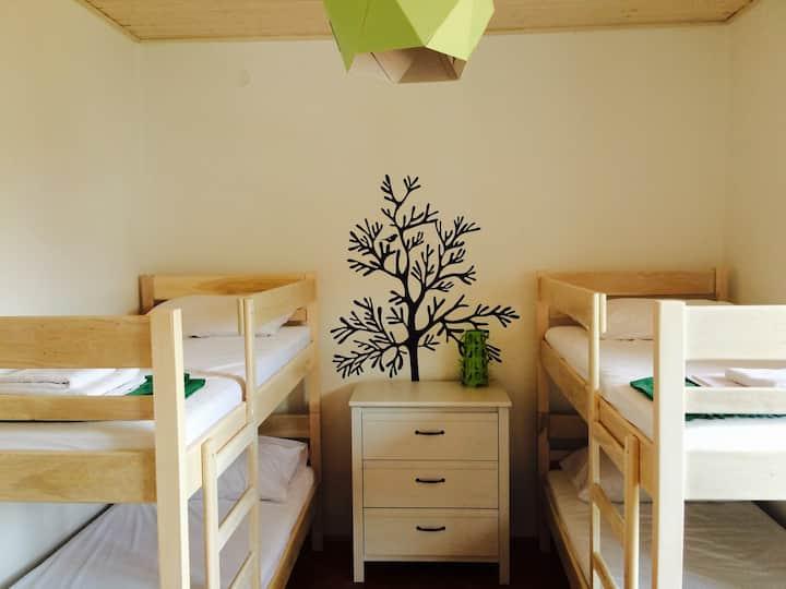 Novalja Pag guest house -green room