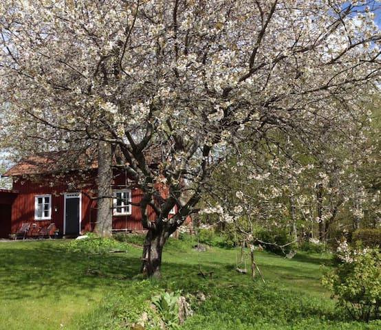 Boende i lantligt charmigt uthus - Borås NV