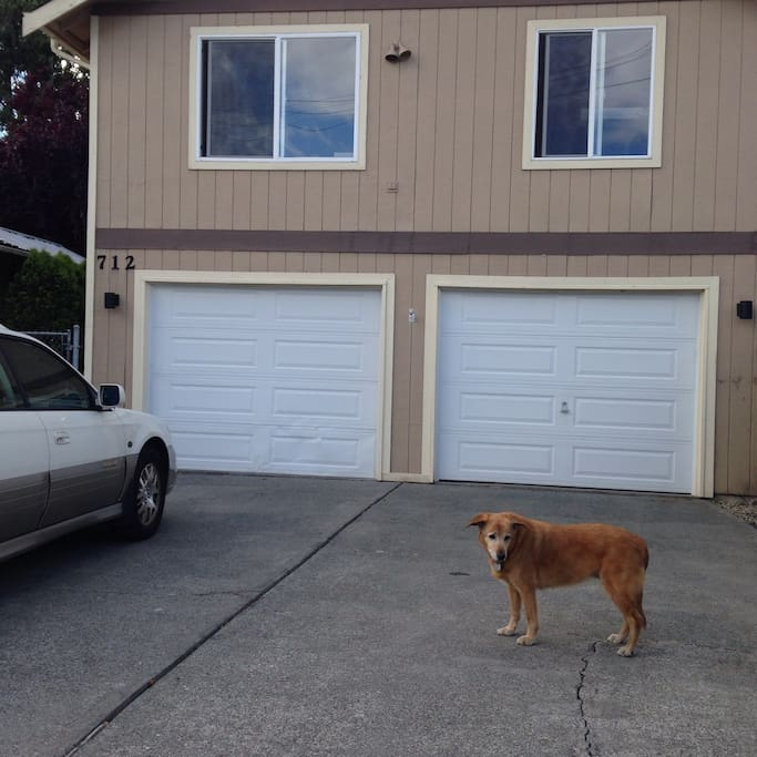 Front of the house. Lots of parking. My Nala dog goes everywhere with me.