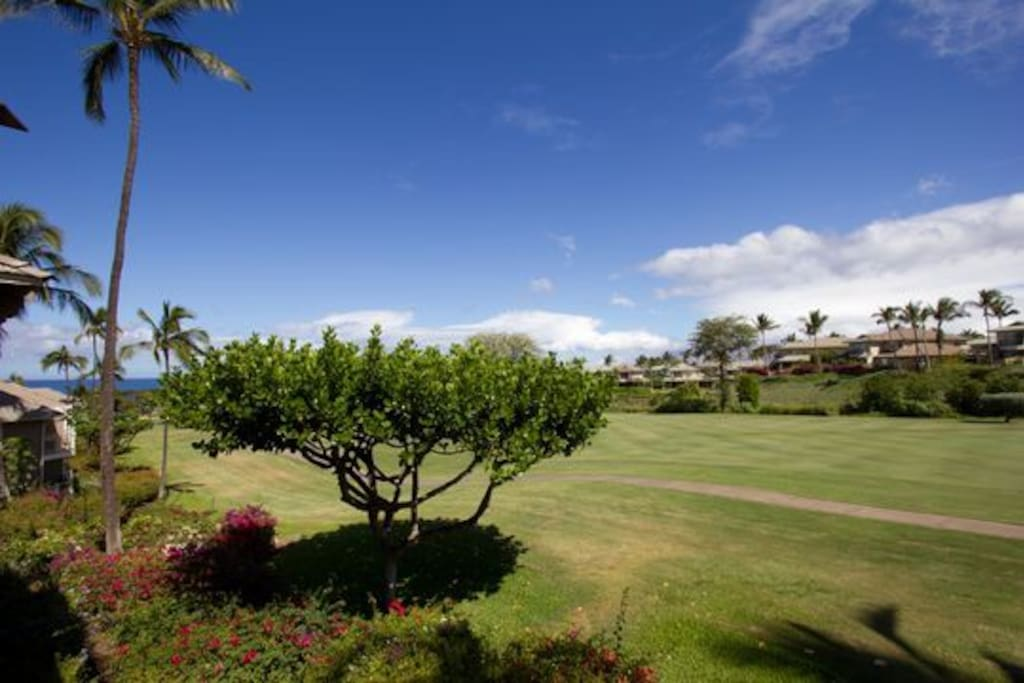 Enjoy watching the golfers and sunsets from your lanai!