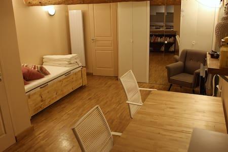 Studio calme plein centre ville, 30m2 - Lägenhet