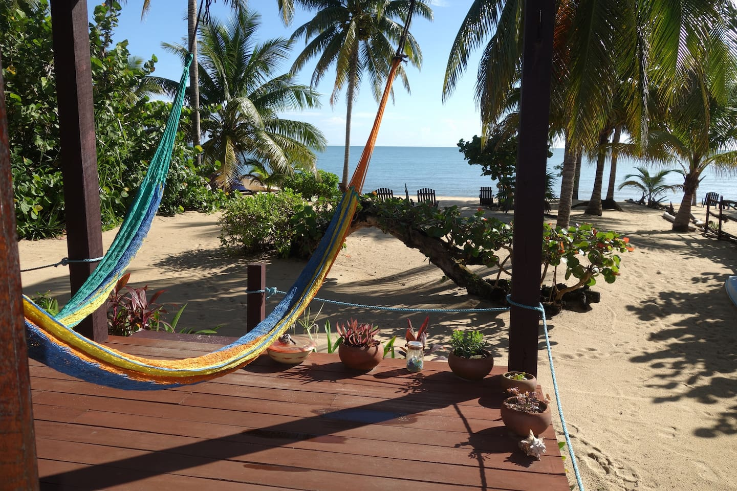 Your hammocks with a beach view