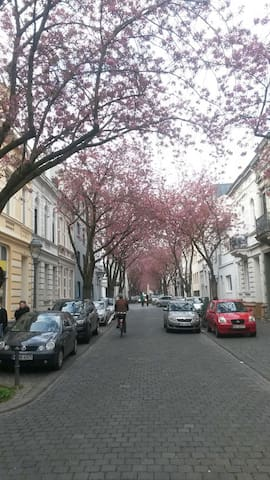 Bright,perfect flat in the city - Bonn - Appartement