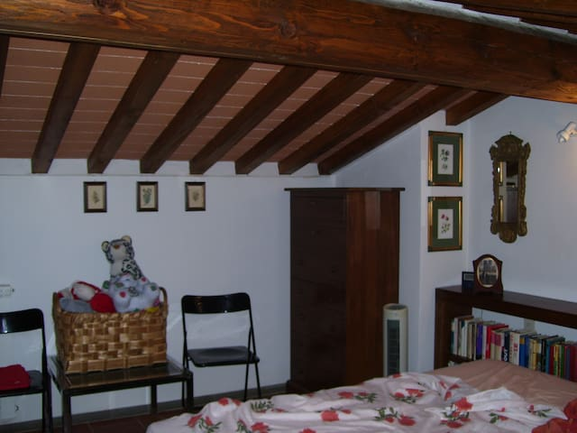 Relax in campagna - Montespertoli - House