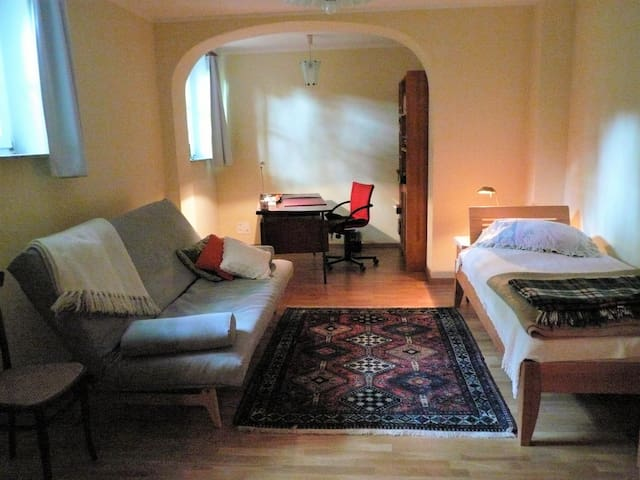 Nice apartment in Leipzig-South/Connewitz