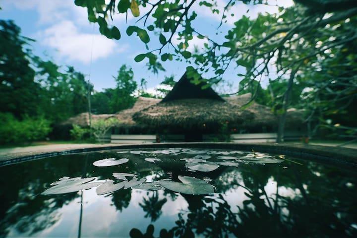 The village by the sea - Mararikulam, Kerala