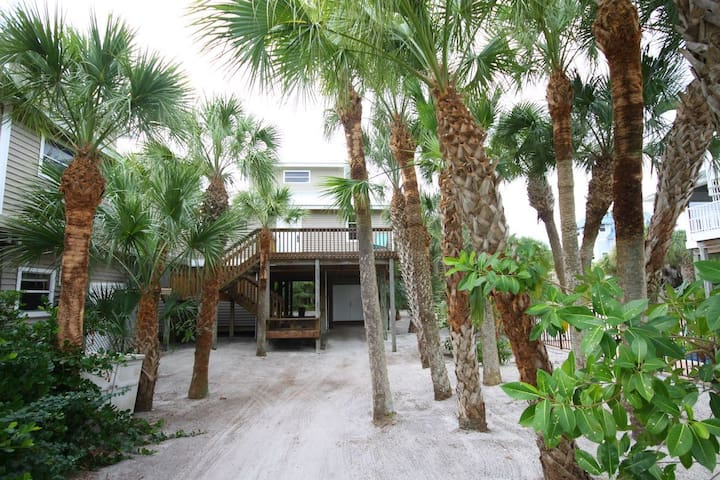 Lots of Palms in the entrance