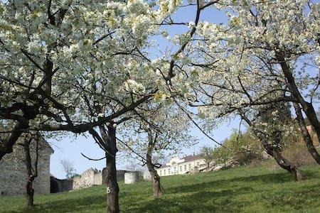 Lenno Castle, Lehnhaus, Paleis Leno - Łupki - Bed & Breakfast
