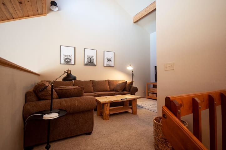 Loft area has pull-out sofa bed and also gives extra living space for kids, adults or friends to spread out.