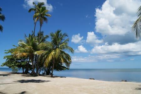 Terrazas del Golf garden steps from the beach,WiFi - Cabo Rojo
