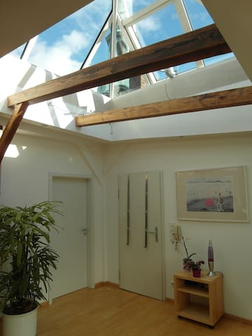 Penthouse Alster / St. Georg (2,5 Zimmer & Loggia)