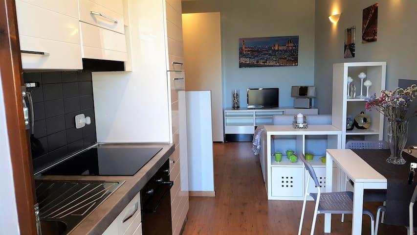 Monolocale per 2 persone + 1 fra Firenze e Arezzo - Terranuova Bracciolini - Apartamento