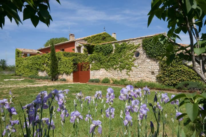 Holiday home with private pool - Hérault- Languedoc - South France