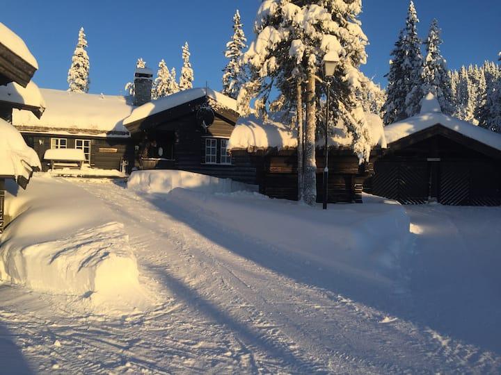 Beautiful cabin with very high standard-Trollstua