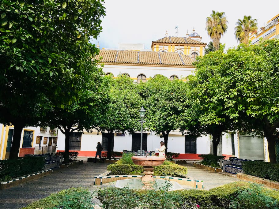 The house from square Plaza Doña Elvira.