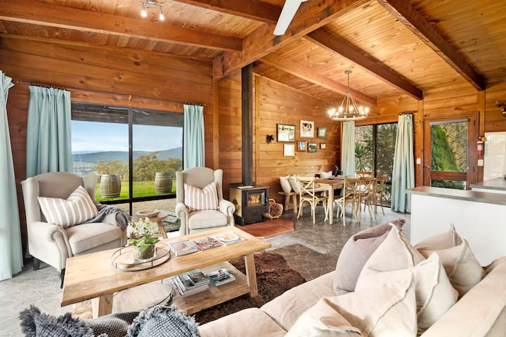 Living room with fireplace, vineyard and mountain views