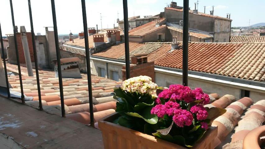Studio cosy avec sa terrasse   - Montpellier - Apartment