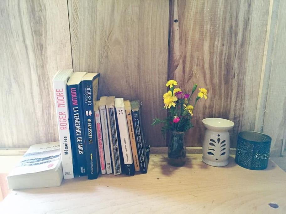 Books in Ban Hieu Garden Lodge