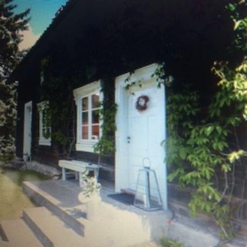 Bjørke Østre - Løten - House