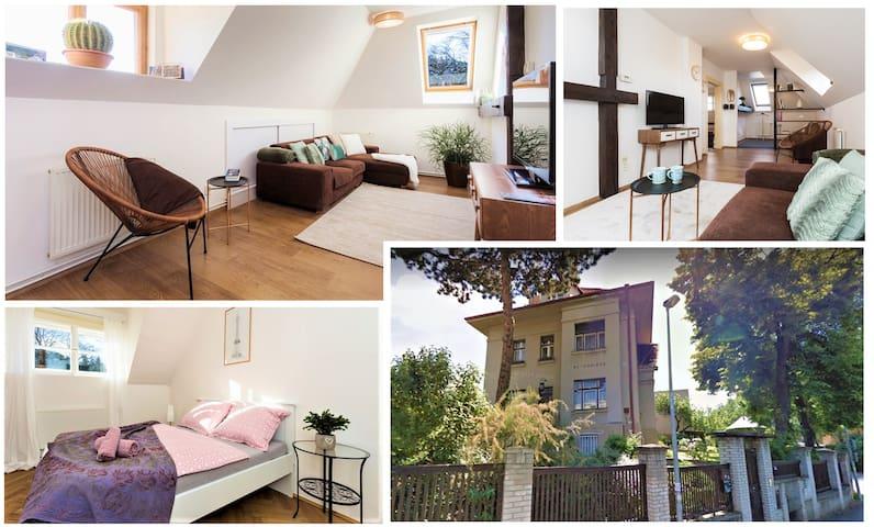 Luxury Attic Apartment in Villa, 10 mins to Center