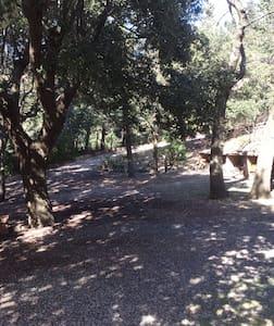 Volterra, Castiglioncello, Pisa, Campagna, Mare - Spicciano