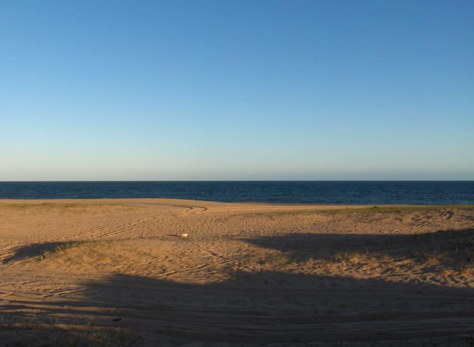 the beach.-