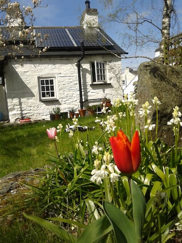 17th Century Lake District cottage - Bowland Bridge - Hus
