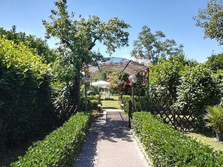 Il Giardino degli Agrumi - Appartamento