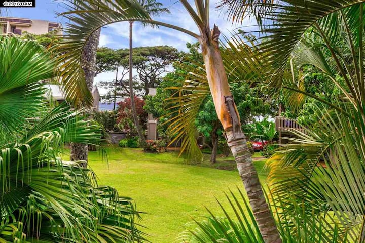 2 BD Tropical Oasis in Kahana Pohailani #239
