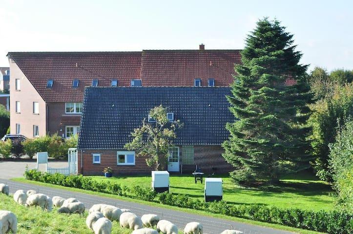 FeWo DIREKT am DEICH - gern mit Hund :) - Wangerland - Huoneisto