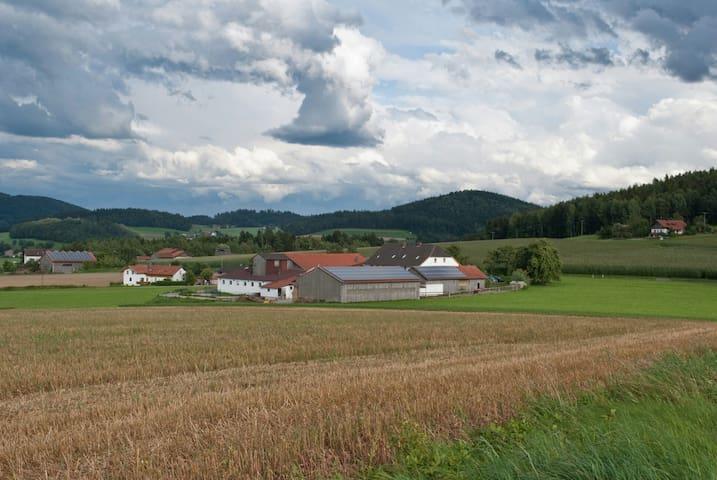 Urlaub auf dem Bauernhof in Bayern - Eschlkam - Apartament