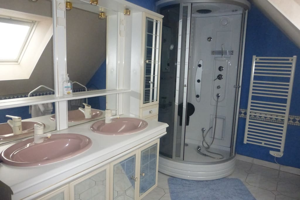 Salle de bain et wc séparé privatifs avec double vasques et douche avec radio.