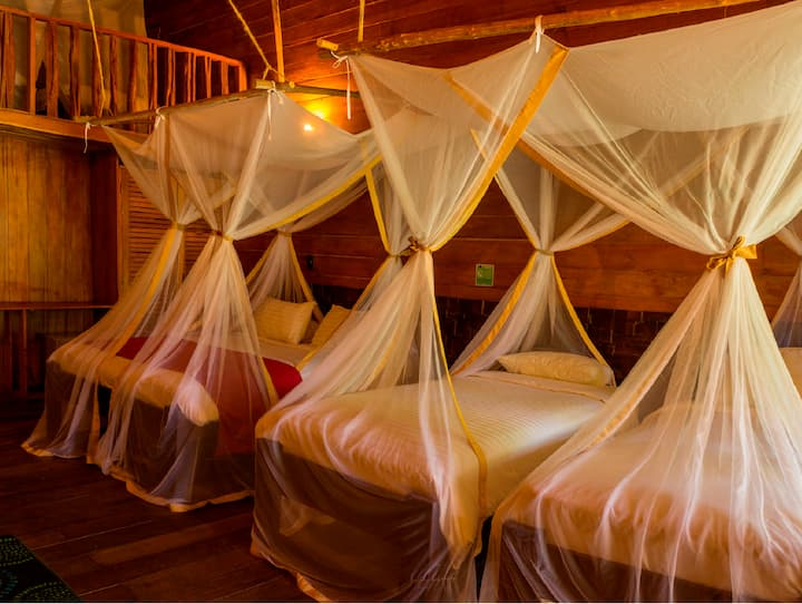 Habitación Triple - On Vacation Amazon