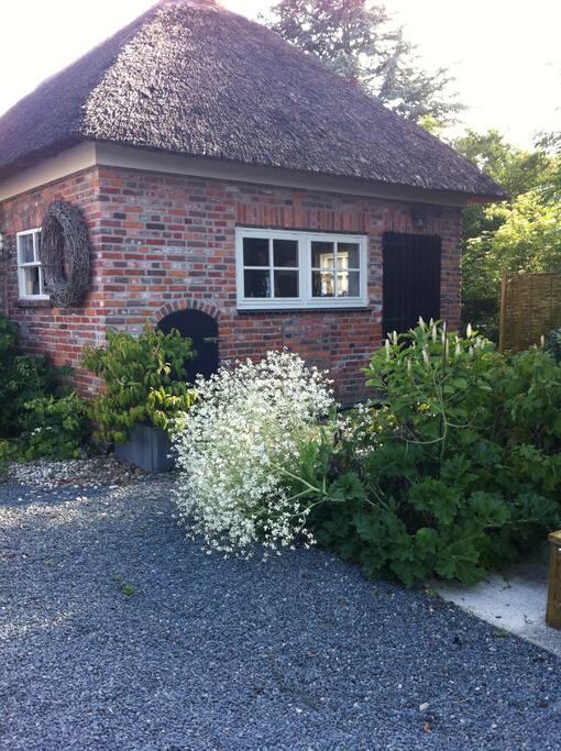 Beplanting bij de cottage en (ontbijt)tafel buiten