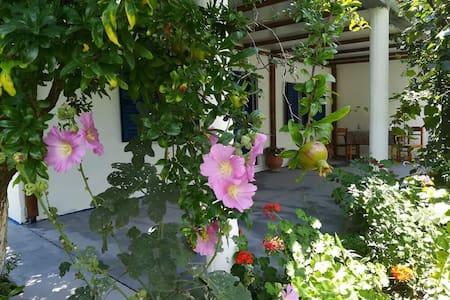 Aspous cozy residence