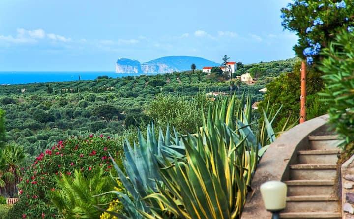 Alghero, Villa Agatha per 12 ospiti vista mare
