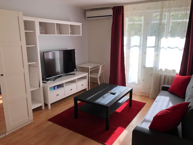 Vilnius central studio apartment