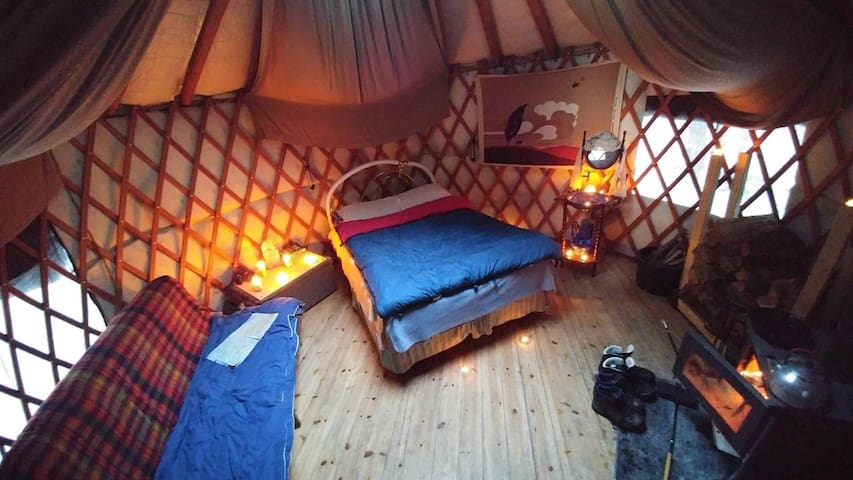 A Yurt in the Forest
