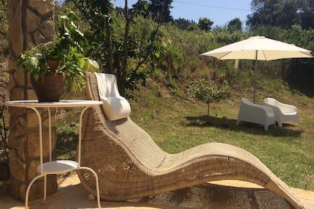 Adega Villa - Carvalhal Benfeito - Huvila