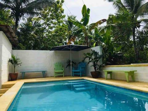 Jamaica linstead Property for