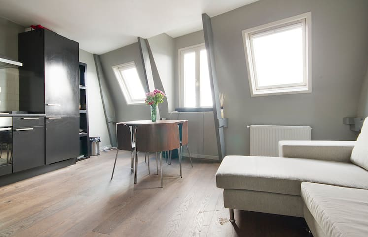 Amazing Apt with Roof Terrace near Jordaan
