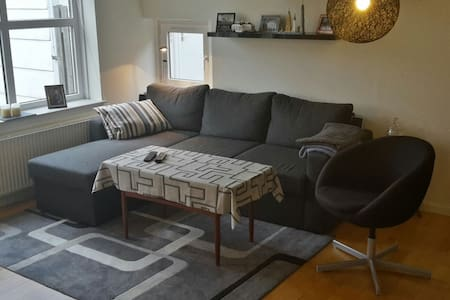 65m2 appartment i Billund - Billund